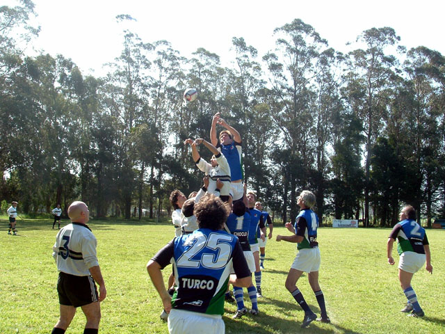 mar del plata rugby festival