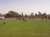 rugby jockey09 010