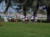 Santa Fe 2011 017