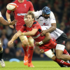 Test matches del jueves