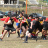 Torneo de Ascenso '17
