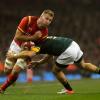 Gales hundio mas a los Boks