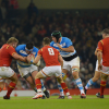 Argentina v Gales