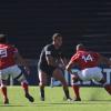 Triunfo de Argentina XV