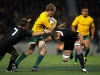 pat-mccabe-wallabies-v-all-blacks-2011