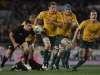 scott-higginbotham-wallabies-v-all-blacks-2011