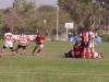 rugby jockey09 036