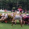 Designaciones torneos UAR