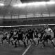 Nueva Zelanda campeon