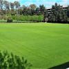 Academia de Buenos Aires