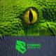Cobras será la franquicia de Brasil